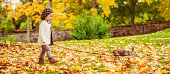 Cute girl in park at autumn with chihuahuahttp://www.satuknape.com/wp-content/uploads/2012/10/livincent.jpg