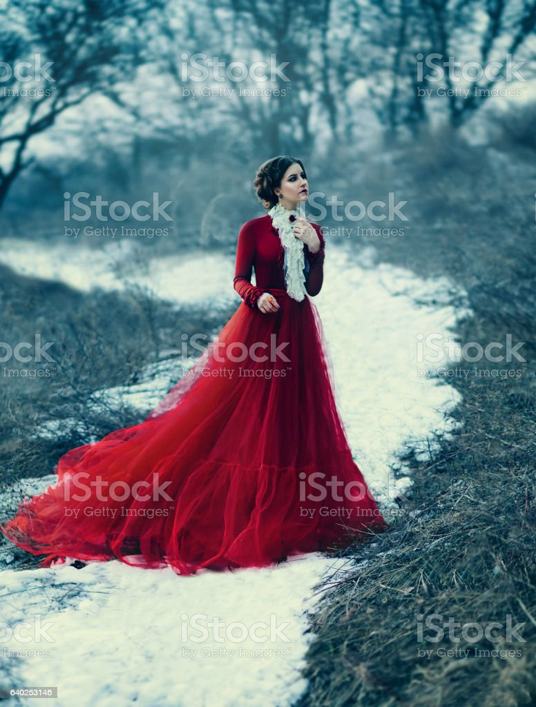 Cute girl in luxurious  dress stock photo