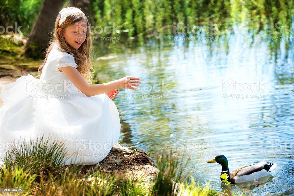 かわいい女の子ホワイトのドレスでアヒルの餌付けます。 ストックフォト