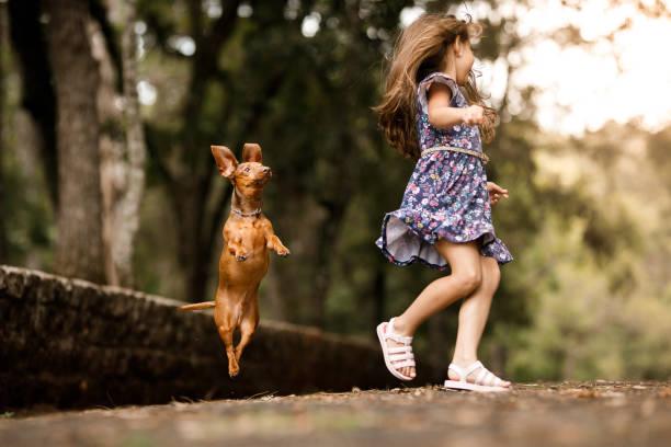 Cute girl playing with dog picture id1124609699?b=1&k=6&m=1124609699&s=612x612&w=0&h=iwqfc w zq3aca9uji5t1cc3xop yfetqusrarmxszu=
