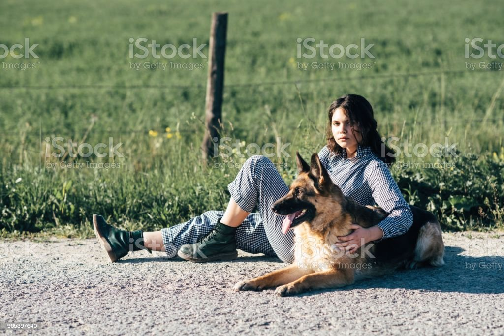 Cute girl playing with her dog against the background of the field zbiór zdjęć royalty-free