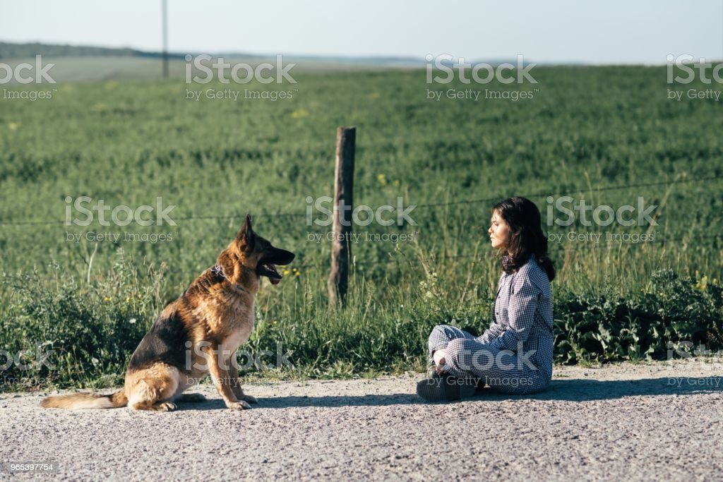 Cute girl playing with her dog against the background of the field royalty-free stock photo
