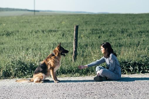필드의 배경에 대 한 그녀의 강아지와 함께 재생 하는 귀여운 여자 개에 대한 스톡 사진 및 기타 이미지