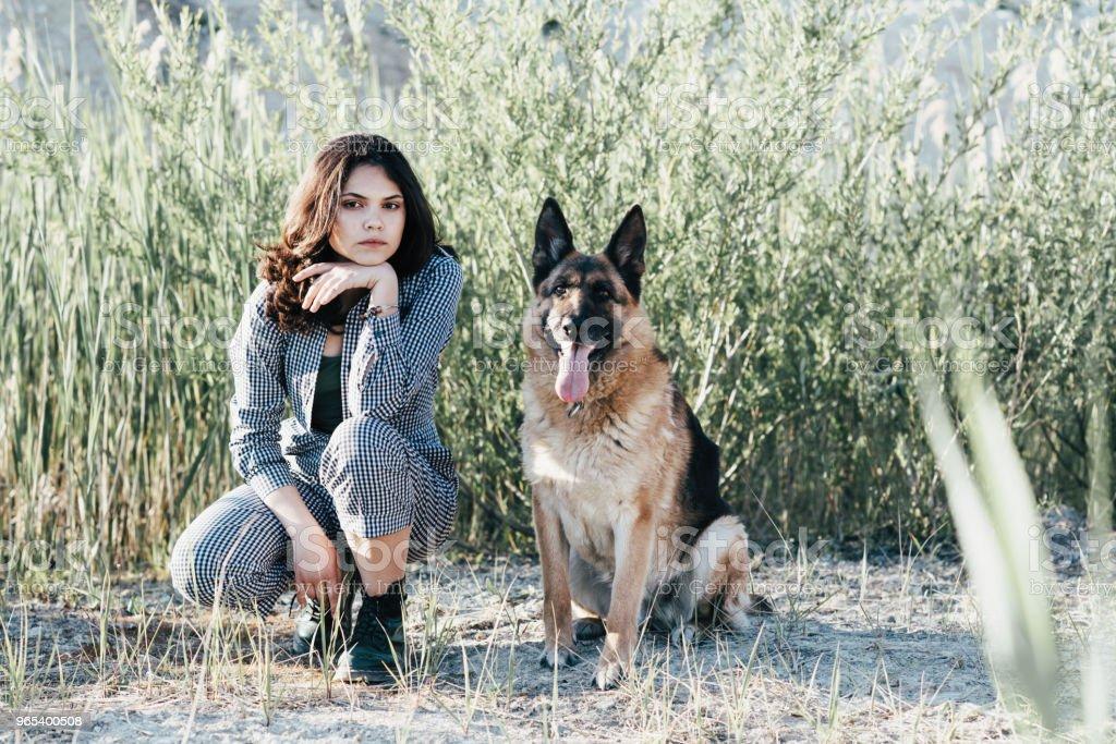 Linda garota brincando com seu cachorro no contexto do campo - Foto de stock de Abraçar royalty-free
