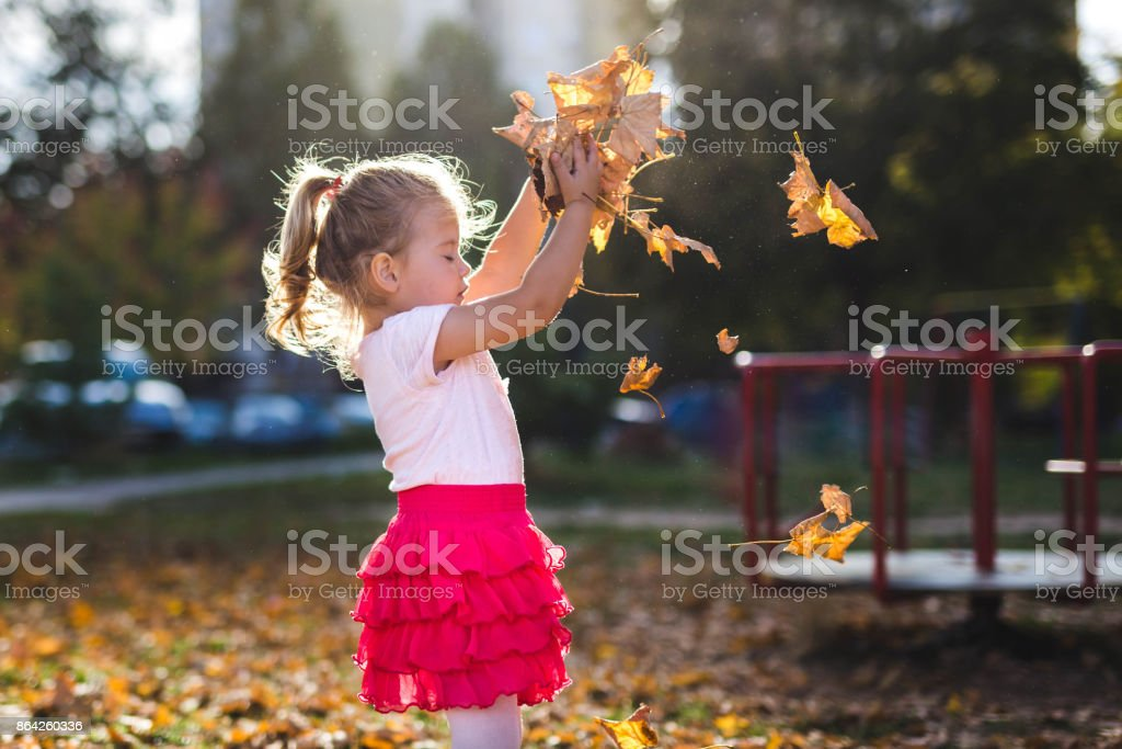 Cute girl with autumn leaves royalty-free stock photo