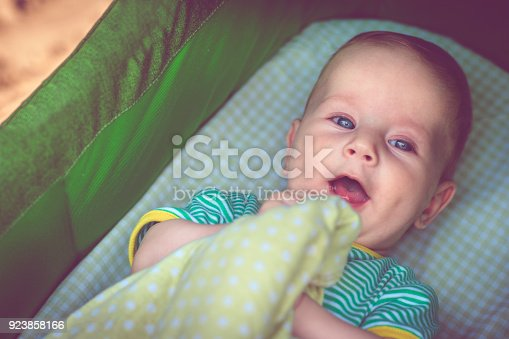 istock Cute happy baby boy in carriage 923858166