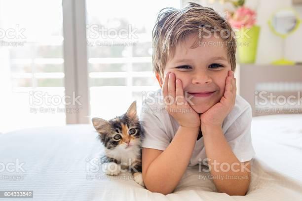 Cute happy boy enjoying with kitten picture id604333542?b=1&k=6&m=604333542&s=612x612&h=rw7 v1xa2kd hll eerq05fbw aqgd 9zm898xdfspq=