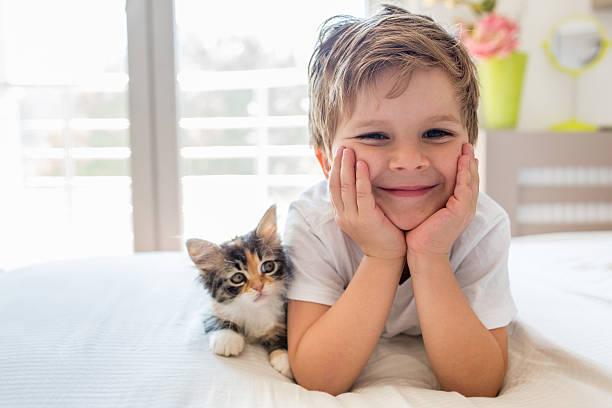 Cute happy boy enjoying with kitten picture id604333542?b=1&k=6&m=604333542&s=612x612&w=0&h=e lu57vvq4wqp1t plq4doocm5mtkztmy06xtjixbcq=