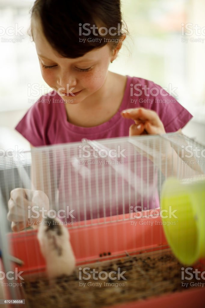 Cute Happy Girl Playing And Feeding Hamster In Cage Stock
