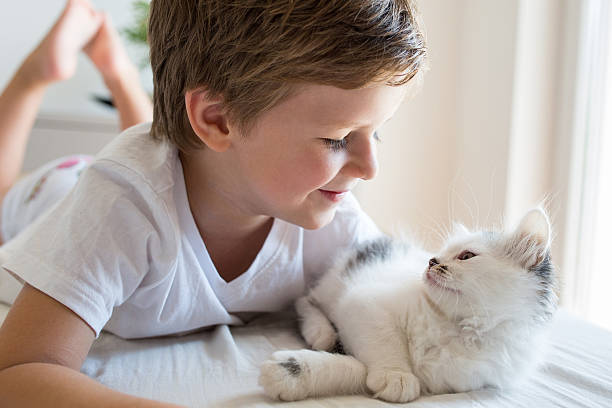 Cute kid and kitten looking at each other picture id611767358?b=1&k=6&m=611767358&s=612x612&w=0&h=pdmocx7ekllmifuhxnwza2awlzvcssnjg5yvcd6m xm=