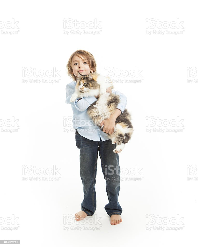 Cute kid holding fluffy cat royalty-free stock photo