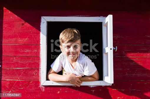 Happy little boy playing in three house and looking at camera through the window.