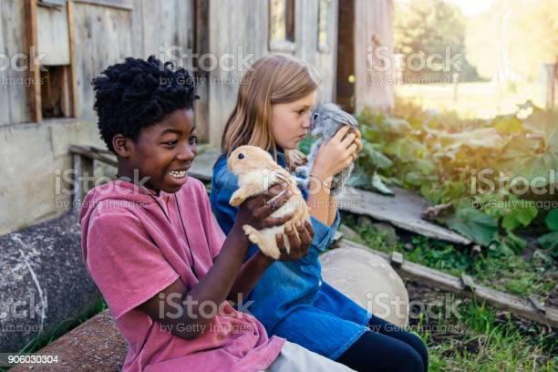 Cute kids cuddling baby rabbits outdoors in spring picture id906030304?b=1&k=6&m=906030304&s=612x612&h=pz1xwy6l26mnkzxoi foyfee5yb0kbyi12twfshi0va=