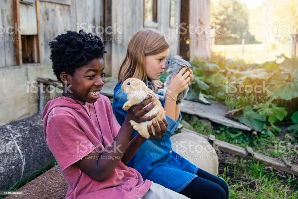 Cute kids cuddling baby rabbits outdoors in spring. stock photo