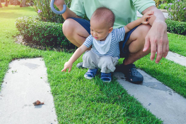 cute little asian 1 year old toddler baby boy child playing in the park with snail at day time - ślimak gastropoda zdjęcia i obrazy z banku zdjęć
