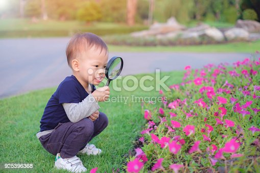 istock Cute little Asian 18 months / 1 year old toddler baby boy child exploring environment by looking through a magnifying glass in sunny day at beautiful garden, kid first experience & discovery concept 925396368