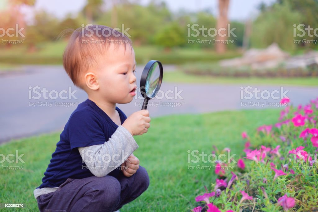Cute little Asian 18 months / 1 year old toddler baby boy child exploring environment by looking through a magnifying glass in sunny day at beautiful garden, kid first experience & discovery concept stock photo