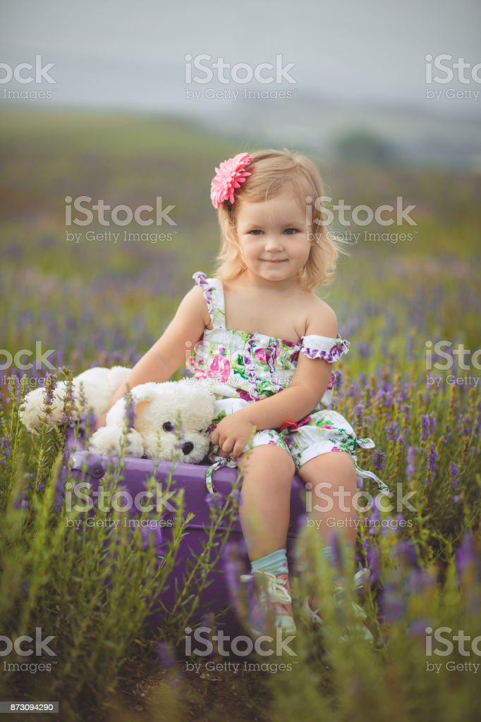 Cute little baby blong girl walking posing on meadow of forest wild lavender wearing stylish colourful drerss and holding teddy bear friend in tiny hands alone sitting on purple trunk case bag stock photo