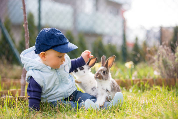 Cute little baby boy child playing little bunny in park picture id1035500222?b=1&k=6&m=1035500222&s=612x612&w=0&h=khaoz2rh34ceoiizbjkfg74zrouvrww0fhoya fgsue=