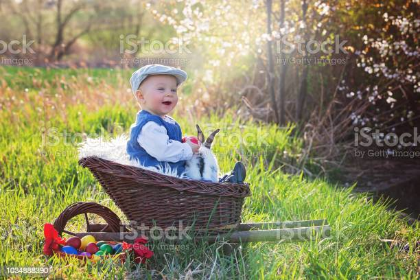Cute little baby boy in trolley in a blooming garden with little and picture id1034888390?b=1&k=6&m=1034888390&s=612x612&h=r0txjuh1li8rob gar2wh8hhldpvpsn9eq5gygbuqzq=