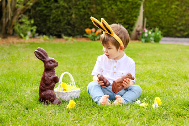 Cute little baby boy with bunny ears eating chocolate Easter bunnies sitting on green grass outside in the spring garden with basket of easter eggs looking at big chocolate rabbit. Childhood stock photo