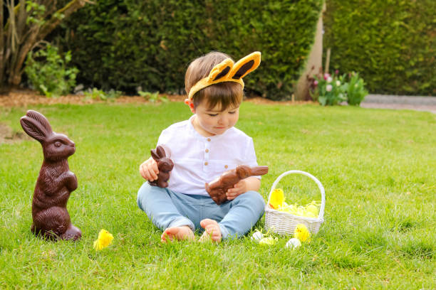Cute little baby boy with bunny ears holding  chocolate Easter bunnies and looking at them sitting on green grass outside in the spring garden with basket of easter eggs and big chocolate rabbit. Happy sweet childhood stock photo