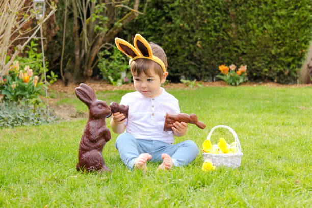 Cute little baby boy with bunny ears on head holding  chocolate Easter bunnies sitting on green grass outside in the spring garden with basket of easter eggs loking with interest at big chocolate rabbit. Happy sweet childhood stock photo