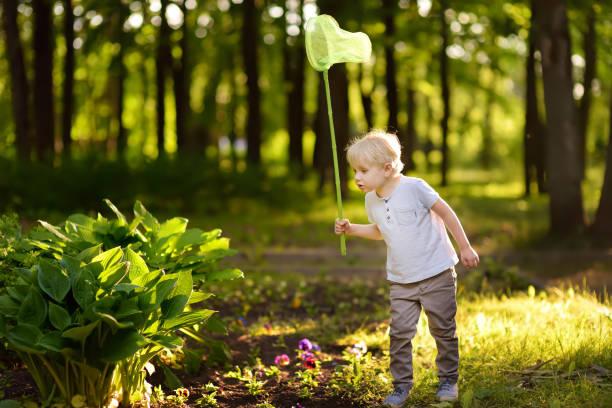 Cute little boy catches butterflies with scoopnet on sunny of nature picture id1128420558?b=1&k=6&m=1128420558&s=612x612&w=0&h=c j7s5uw2lju sye1m9sihabat02ilq0w8jvo w88t0=
