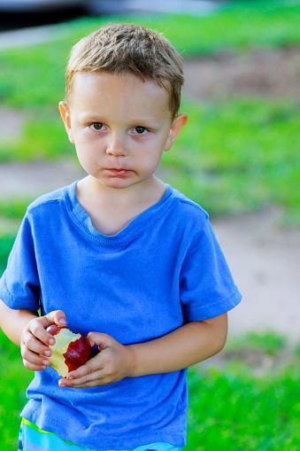 Schattige Kleine Jongen Een Rode Appel Eten In Groen Park Stockfoto en meer beelden van Appel