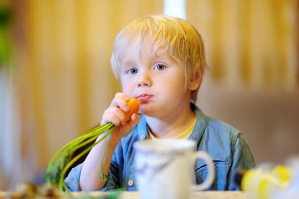 Cute little boy eating fresh organic carrot stock photo
