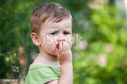 istock Cute little boy eats strawberries 1085624610