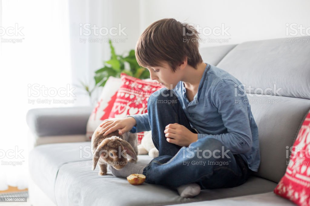 Cute Little Boy Feeding Rabbits With Apple At Home Stock Photo