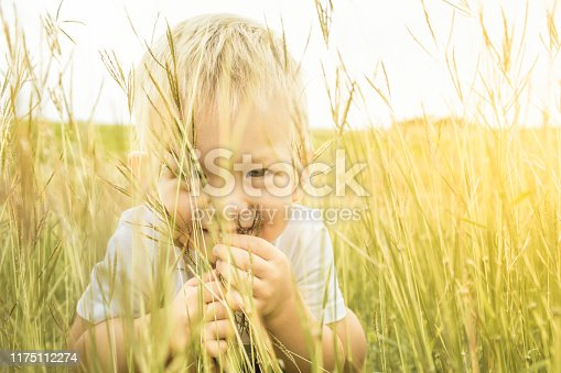 Happy little boy playing outdoors in grass field.