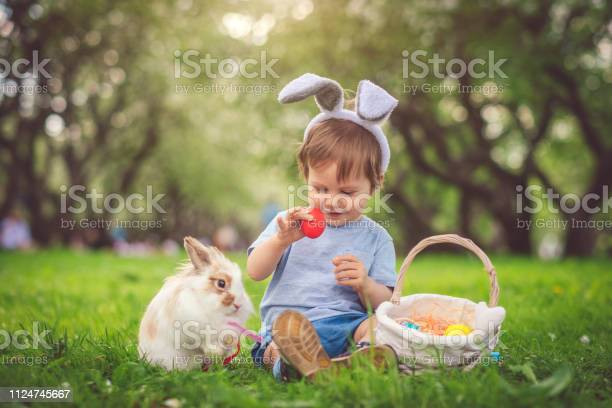 Cute little boy playing with bunny and easter eggs picture id1124745667?b=1&k=6&m=1124745667&s=612x612&h=rpn0amyzkf7io2jfbv g 9jtmhhx3atquawi7pthe60=