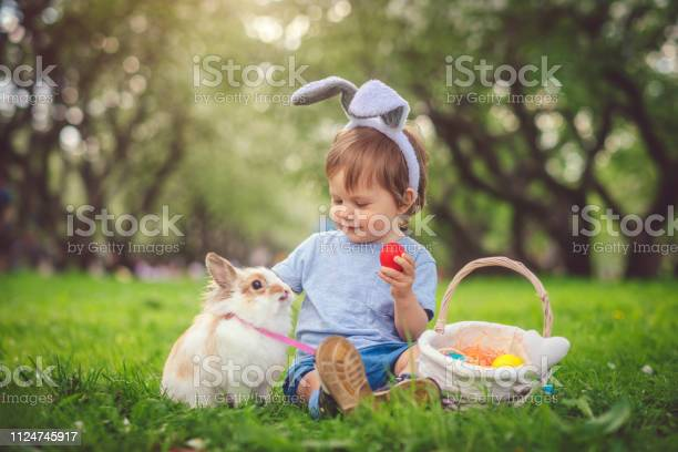 Cute little boy playing with bunny and easter eggs picture id1124745917?b=1&k=6&m=1124745917&s=612x612&h=vrz2iuq60dqpuwvzcsnciv nvqpblu x6oqs4aoahla=