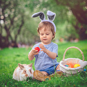 Cute little boy playing with bunny and Easter eggs