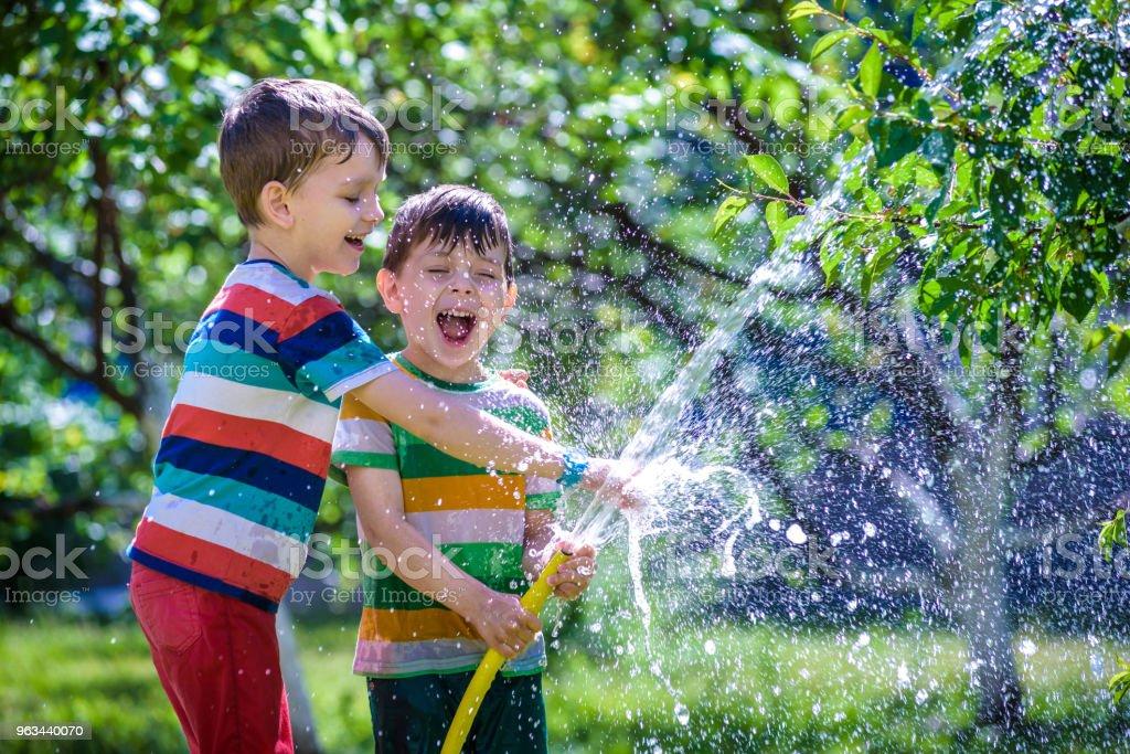 Mignon petit garçon, arroser les plantes avec un arrosage tuyau dans le jardin. - Photo de Amitié libre de droits