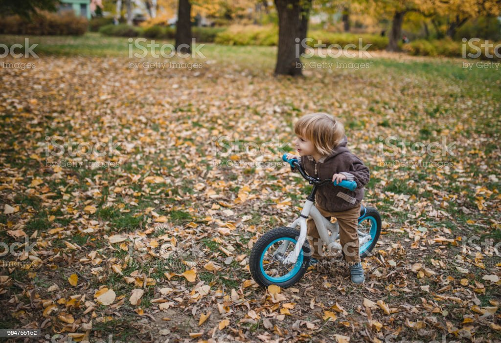 Cute little boy with a bike in autumn day. royalty-free stock photo