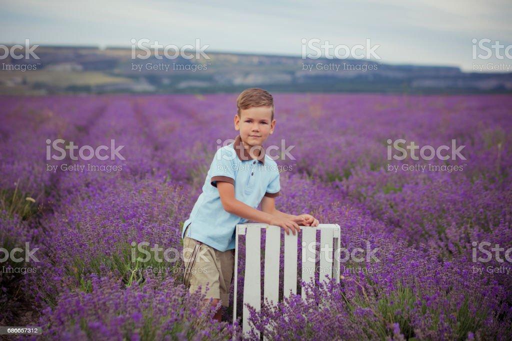 Cute little boy with on lavender field on beautiful summer day stylish dressed Lizenzfreies stock-foto