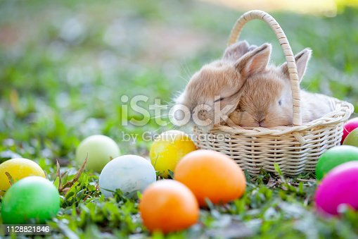 istock Cute little bunny sleeping in the basket and easter eggs in the meadow 1128821846