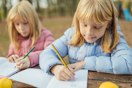 1042756824 istock photo Cute little caucasian twins sisters enjoying drawing at the backyard with paper 1217687543