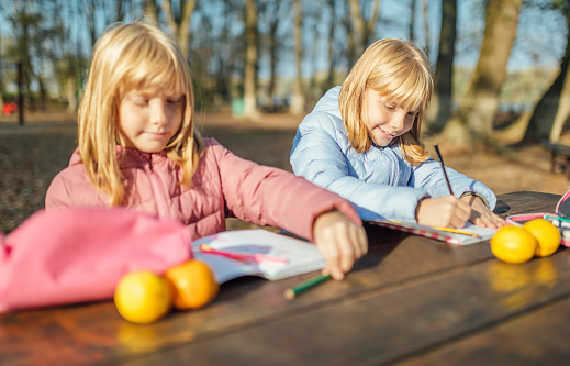 1042756824 istock photo Cute little caucasian twins sisters enjoying drawing at the backyard with paper 1217687544