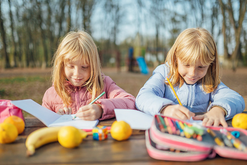 1042756824 istock photo Cute little caucasian twins sisters enjoying drawing at the backyard with paper 1217687551