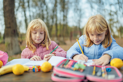 1042756824 istock photo Cute little caucasian twins sisters enjoying drawing at the backyard with paper 1217687555