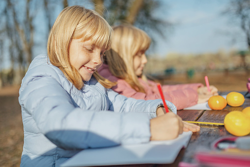 1042756824 istock photo Cute little caucasian twins sisters enjoying drawing at the backyard with paper 1217687568