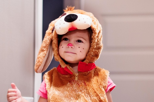 Cute little girl child 2 years old dressed in dog halloween costumes. We can see her during preparation and having candy in halloween bucket. She is make up with  small pink nose and small black dots on her cheeks. She have black eyes. Photo was taken in Quebec Canada.