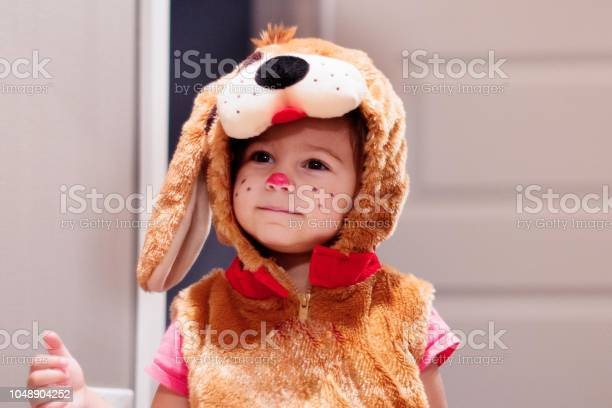 Cute little child dressed in dog halloween costumes picture id1048904252?b=1&k=6&m=1048904252&s=612x612&h=5f7tdjfuvwbtze0u2uf8ystywmclppa8bmsvqt62rsk=