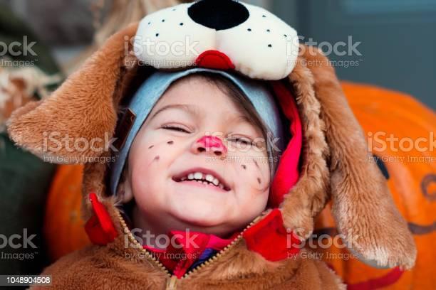 Cute little child dressed in dog halloween costumes picture id1048904508?b=1&k=6&m=1048904508&s=612x612&h=n95ppu5tij2pe0d51k gq86jldmbbj0otzdexriw3oi=