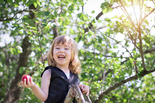 cute little child picking fruit - pesche bambino foto e immagini stock