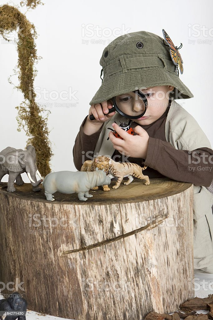 Cute little explorer with animals stock photo